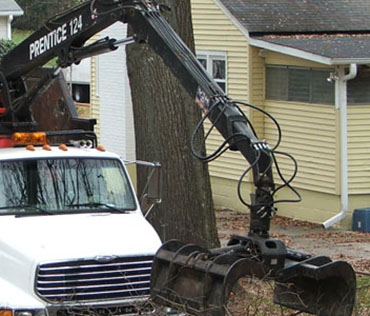 Grapple Truck picking up tree debris